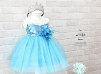 DHL Free Shipping Custom-made Movie Cosplay Costume elsa Princess Dress from Frozen for women