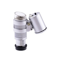 Portable Mini 20X Magnifier Microscope w/Two LED Lamps-Silver+Black