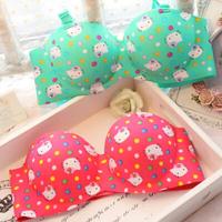 Free shipping 2014 HELLO KITTY sexy women underwear girls bra lady corset cut bras bustiers