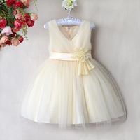 Girl's Paty Dress 2014 Summer Sleeveless Flower Child Tutu Dress Children Princess Evening Dress 6pcs/lot