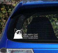 Grumpy cat doesn't like your stick figure family car decal sticker stick family,funny car stickers