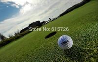 Free Shippingt 10 PCS 2014 new high quality  golf, brand golf balls