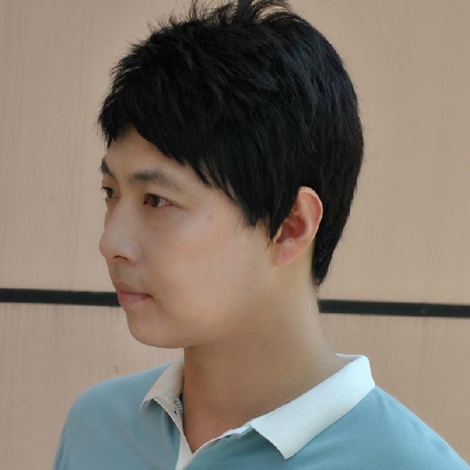 Blended Hair Wigs Hair Wig Short Hair Male