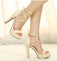 2014 new Roman style high heel shoes Fashion women sandals Open toe Platform  Sexy Wedding Banquet Ankle Straps Sandals