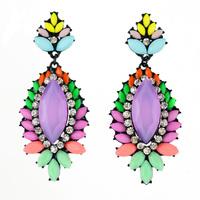 Multicolor Exotic Resin Shiny Rhinestone Dangle Earrings