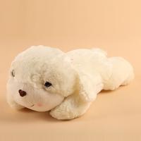 Small plush toy dog white dog doll girls lovers gift