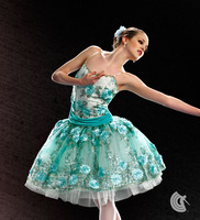 Free shipping  ballet costumes for women Curtain call women's dance clothes