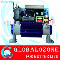 2sets free shipping adjustable 2G ceramic tube+power supply !