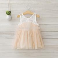 2014 summer girls sleeveless lace dress , tutu dress, 5pcs/lot   DMJ23
