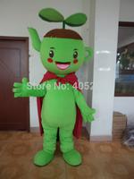 POLYFOAM high quality costume  green apply mascot costumes