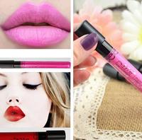 Free shipping 1pcs Waterproof lip gloss 12 colors lipgloss velvet lipstick matt lipstick vitality star in the discount 8g A+