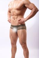 New fashion men sexy briefs transparent  mesh ultra-thin low waist ventilate mens brief gay underwear free shipping wholesale