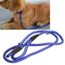 slip collar dog price