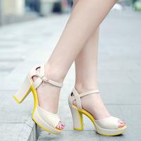 2014 women's fashion open toe sandals female high-heeled women's thick platform heels shoes