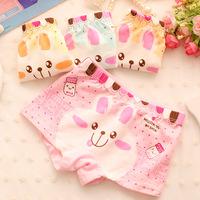 6pcs/lot girls underwear,baby clothing,calcinha infantil,school girl shorts,baby girl panties, kids underwear, yong girl panties