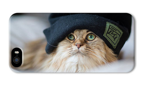 Free Shipping Hipster for iPhone 5S free case cat headdress for iPhone 5/5S(China (Mainland))