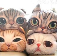 37cm*29cm Cartoon Simulation 3D Cat  Nap Pillow Cushion and Pillow Washable Car Waist Pillow Free S shipping