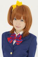 Kousaka Honoka From LoveLive!Brown 40cm Cosplay Anime Wig