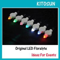 Festival color LED light, Christmas  battery operated led mini decor light