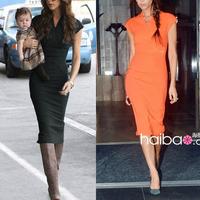 Summer Autumn 2014 European Pop Star Style prom dress Women Formal Business Office Zipper Knee Length Bodycon Pencil Dress