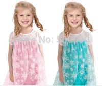 1pcs retail,free shipping  2014 hot frozen dress Anna Elsa ballgown snow dress for 2-7 year girl