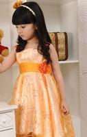 Free shipping 2014 Princess dress girls dress retail 1pcs girls dancing clothing children tutu Frozen dress for summer
