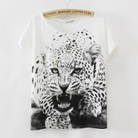 New 2014 summer Women batwing coat style thin plus size loose short sleeve T-shirt women evil leopard print Tops Tees