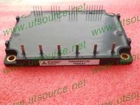 (module)PM25RSK120:PM25RSK120 2pcs