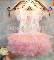 RQ0160 Free shipping New 2014 Custom-made Movie Cosplay dress summer girl dress Costume Princess Elsa Dress Children clonthing