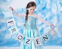 New 2014 frozen elsa dress with capekids girls princess dress,fashion girls long sleeve dresses Frozen elsa costume dresses