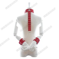 Alternative passion Sex Toy Kit flirting supplies cervical collar combination