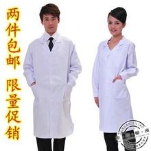 popular coat lab