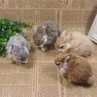 Hot sale small animal home decoration child baby plush toy rabbit dolls,simulation rabbit