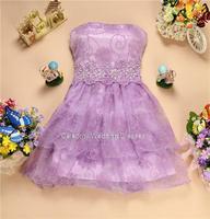 2007 wedding toast  skirt sister company annual meeting dress lace chiffon dress