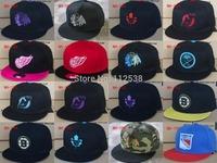 2014 hot Philadelphia Flyers snapback caps Boston Bruins adjustable baseball hats detroit red wings snapbacks free shipping