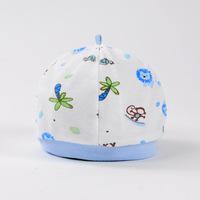 Wholesale 10pcs/lot Hot Sale 0-6 Months Baby Caps for Boys&Girls, Newborn Boy Hats Infant Caps Free Shipping