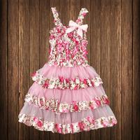 Retail Wholesale 2014 New Arrival Baby Girl Lace Dress Girl Dress Tutu Baby Dress Princess Free Shipping