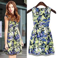 free shipping summer 2014 new casual women dress  Sleeveless Floral Dress  Printed cotton show thin short Tank Dress