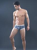 Thermal Mens Mesh Sheer Underwear Brand SHINO Sexy Men's Boxers Shorts Men