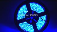 5m 300 LED 5050 SMD 12V flexible light 60 led/m 5050 waterproof LED strip tape 12V DC white/warm white/blue/green/red/pink