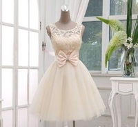 2014 Real  Made Pink Color Scoop Neck Ball Gown Tulle for Parties TM9322 Prom Dresses Short