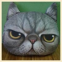 Nordic Chair Pillow Personality Car Cushion Cover Creative Handsome Cat shape Nap pillow Cover Cute seat cushion B7215
