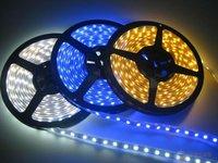 3528 Blue SMD 5M 600pcs LED Flexible Strip light waterproof