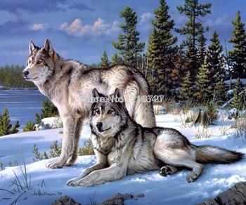 Алмазная вышивка вышивка Diy алмаз живопись комплекты волков снег день 50 * 40 декоративные Resinstone площадь Unfinish