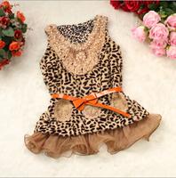 Free shipping - the new foreign trade children's clothing leopard maomao bitter fleabane bitter fleabane yarn vest