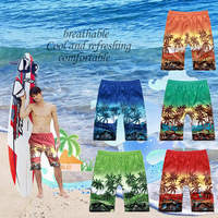 2014 High quality 5 Colors summer Fashion beachwear beach view Brand board shorts boardshorts fashion men beach shorts