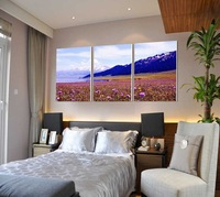 3 Panel modern wall art home decoration frameless oil painting canvas prints pictures P553 snow mountain flower field landscapes