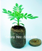 Free Shipping 50 Count 38mm Jiffy 7 Peat Pellets Seed Starting Plugs, Seeds Starter, Start Plant Seedlings Early