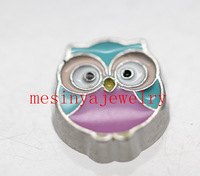 10 pcs owl   floating charms for glass locket  FC14.Min amount $15 per order mixed items