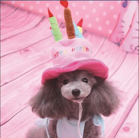 Happy Dog Birthday New Cute Happy Birthday Cake